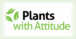 Review by Plants With Attitude