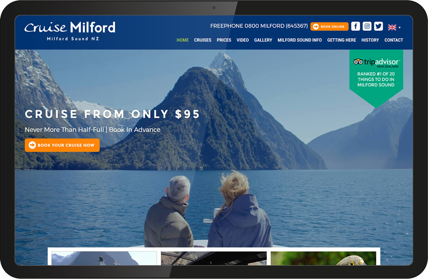 cruise milford website design